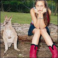 Lasciate in pace i koala